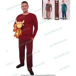 фотография пижама мужская Турция миратекс